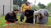 Başkan Yazıcı, Tuzla Belediyesi Yaşlılar Merkezi'nin Günlük Aktivitelerine Katıldı