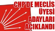 CHP Tuzla Belediye Meclis Adayları Belli Oldu