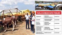 Tuzla Belediyesi,Kurban Bayramı Hazırlıklarını Sürdürüyor