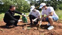 Her İhtiyaç Sahibi İçin Bir Tohumu Toprakla Buluşturdular