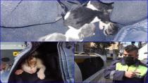 Çöp Konteynerinde Ölüme Terkedilen Yavru Kedileri, Tuzla Belediyesi Temizlik Personeli Kurtardı
